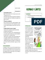 NORMAS LIMITES.pdf