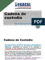 Ses2 18-1-16 Cadena de Custodia