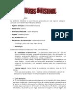Amebiocis Intestinal Trabajo Modificado