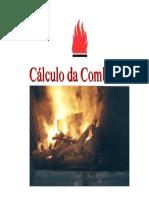 Cálculo Da Combustão