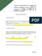 Formato Contrato de Asociación en Participación