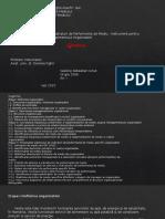 Management organizational si performanta ecologica - Power Point prezentare proiect