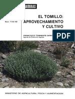 Cultivo de Tomillo