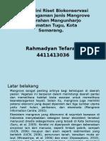 proyek biokonser