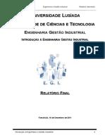 IEGI Relatório Final 2011
