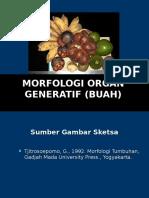 S1-Morfologi Organ Generatif (BUAH) 2 (1)