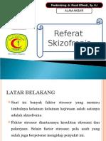 Refferat Skizo