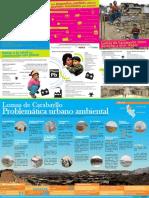 Cartilla-Informativa-Urbano-Ambiental-Lomas-de-Carabayllo-tiene-derecho-a-vivir-mejor.pdf