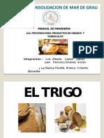 Diapositivas Del Trabajo Del Trigo Luis