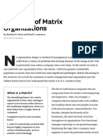 Problems of Matrix Organizations