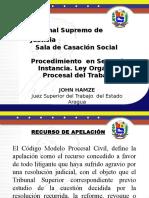 Procedimiento Superior (2da. Instancia)
