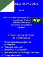Kuliah Anatomi Situs Colli Et Facialis - Prof Satimin Hadiwidjaja