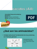 presentacion aminoacidos