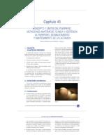 Ginecología y Obstetricia SEGO