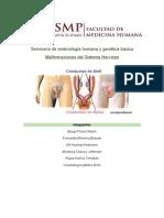 Malformaciones Congenitas Del Encéfalo11