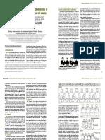 Bodypercussion-Indonesia-BAPNE.pdf