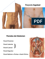 9 Trayectoinguinal 131105093057 Phpapp01
