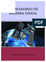 PROBLEMARIO-DE-ALGEBRA-LINEAL-Aaron-Aparicio-Hernandez.pdf
