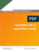 Subsidios de La Seguridad Social