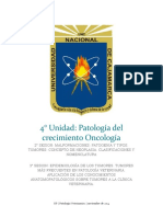 Seminario Oncologia Final