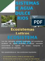 ecosistemas de los rios