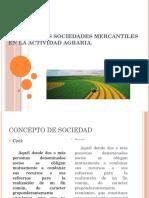 Sociedades en Actividades Agrarias