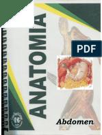 GUIA DE ANATOMIA ABDOMINAL