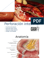 7 Perforación Intestinal