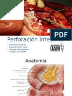 7 Perforación Intestinal
