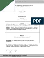 MODELO PARA PRESENTACIÓN DE ENSAYOS