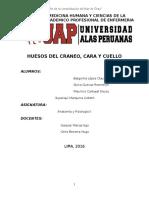Corazon Monografia