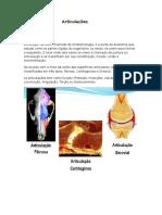 Articulações - Anatomia