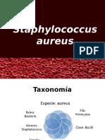 Staphylococcus Aureus Completo .Ppt2