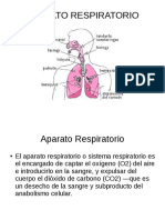 Power Point Sobre el Aparato Respiratorio