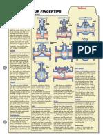 Valves CHE_Facts_0808.pdf