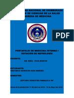 Yautibug Portafolio de Nefrologia
