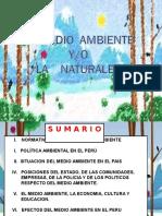 1.- MEDIO_AMBIENTE_PERU Aplicado a La Mineria