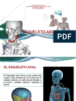 Esqueleto - Axial