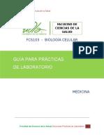 Guia de Practicas en Lab Fcs103