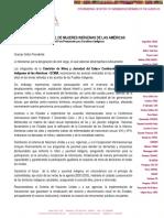 Declaración de la Comisión de Niñez y Juventud - UNPFII