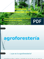 Agroforestería vs Conservación Del Suelo
