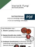 Mikologi-1