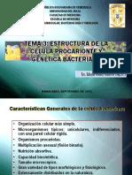Tema 3. Estructura de la célula procariota y genética bacteriana.pdf