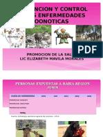IES - FAMILIAS zoonoticas PROMSA 2015.ppt