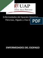 Enfermedades Del Aparato Digestivo, Pancreas, Higado