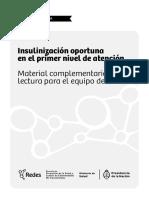 INSULINIZACION_Material_lectura.pdf