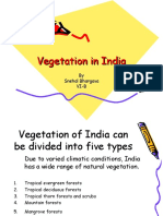 vegetationinindia