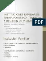 Instituciones Familiares Pp-tenencia y Regimen de Visitas