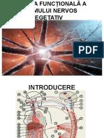 Anatomia Funcțională a Sistemului Nervos Vegetativ