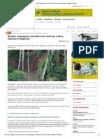 Aviões Despejam Substâncias Tóxicas Sobre Aldeias Indígenas _ GGN